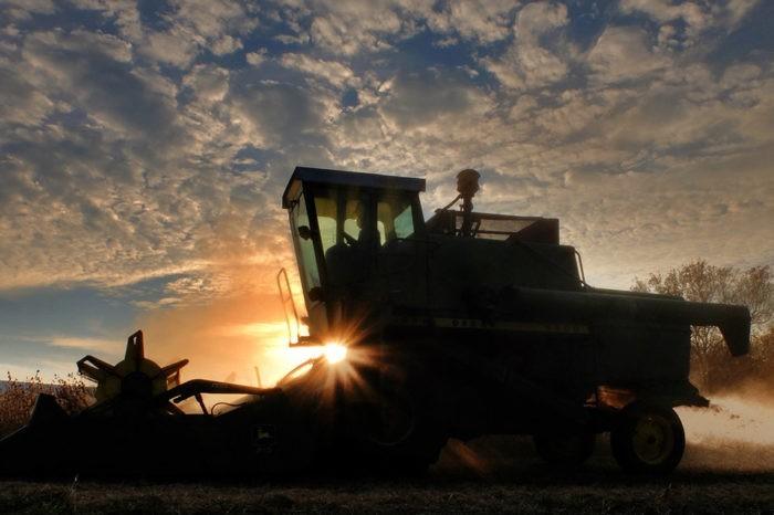 Smart Farming - Produktive, nachhaltige Agrarwirtschaft